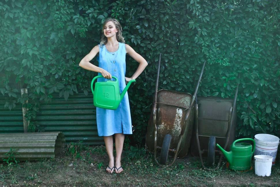 10 dicas para iniciantes da jardinagem Loja O Meu Jardim