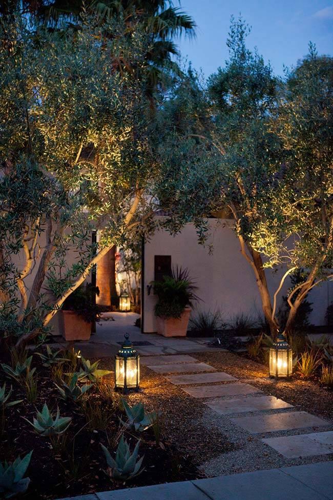 Jardim-com-Iluminação-Exterior-O-Meu-Jardim