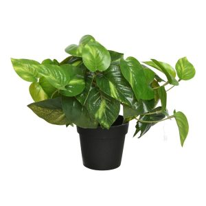 Planta Artificial Trepadeira Jiboia 20X20X32Cm