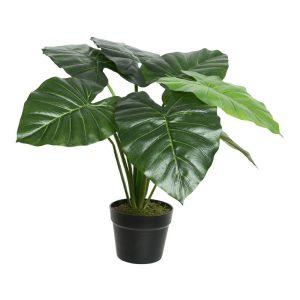 Planta Artificial Taioba Com 8 Folhas 69X52Cm