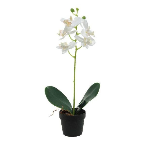 Planta Artificial Orquídea Branca 24X10X40Cm