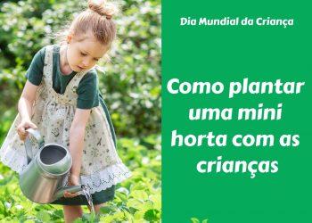 Como plantar uma pequena horta com as crianças em 5 passos