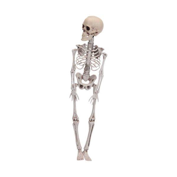 Figura Esqueleto Halloween 42Cm