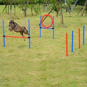 Kit de Treino Cães Agilidade Salto Polo Túnel Equipamento Azul Vermelho NUE