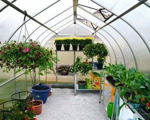 Estufa de Jardim Bella em Policarbonato para cultivo de plantas 2