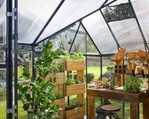 Estufa de Jardim Victory em Policarbonato para cultivo de plantas 2