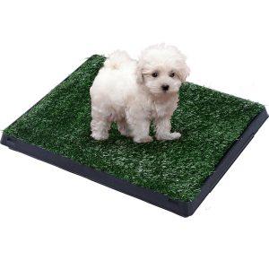 PawHut Tapete para Cães Preto Verde PP PE PS 51 x 76 x 3 cm