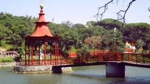 Budha Eden O Meu Jardim