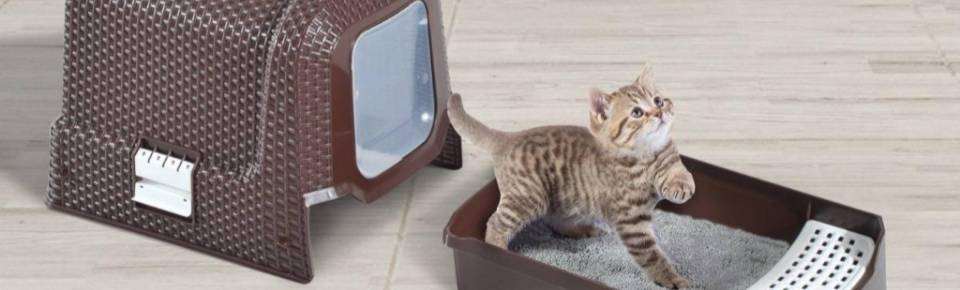 Categoria Caixa de Areia para Gatos OMJ